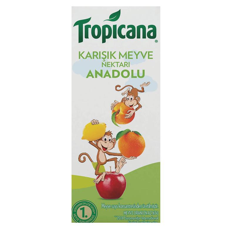 Tropicana Meyve Nektarı Karışık 200 Ml