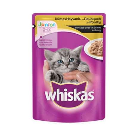 Whiskas Yavru Kedi Maması 100 G