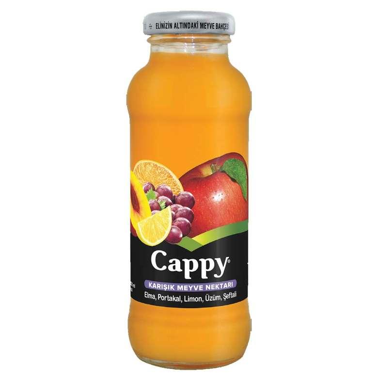 Cam Cappy Meyve Nektarı Karışık 250 Ml